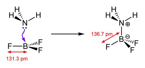 lewis structure for nh3bf3 - AllanEggleston's blog