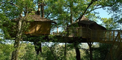 Tree Houses Alicourts - Luxury treehouses in French