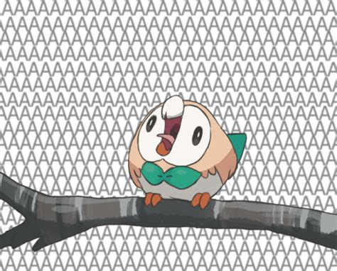 *Rowlet Screams* | Rowlet's Roundness | Know Your Meme