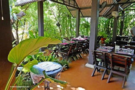 Thailand, Chiang Mai Bai Orchid and Butterfly Farm, Grand